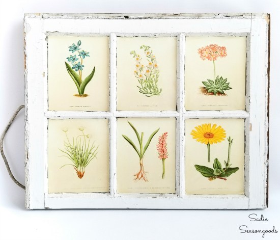 Botanical wall art by upcycling a vintage window as the frame