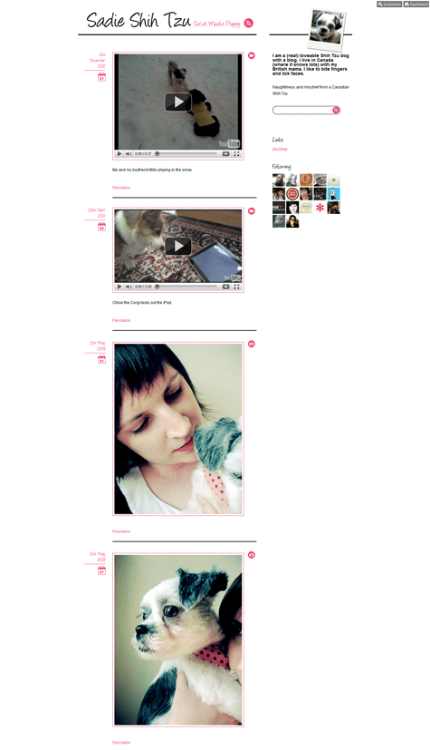 Sadie-Shih-Tzu-tumblr screen shot