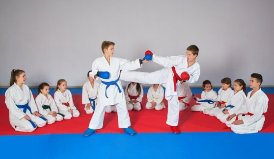 Martial arts studio insurance