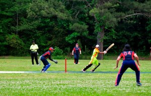 Cricket insurance