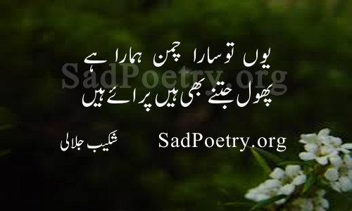 SadPoetry.org   پھول شاعری - لفظ پھول پر بہترین اردو شاعری