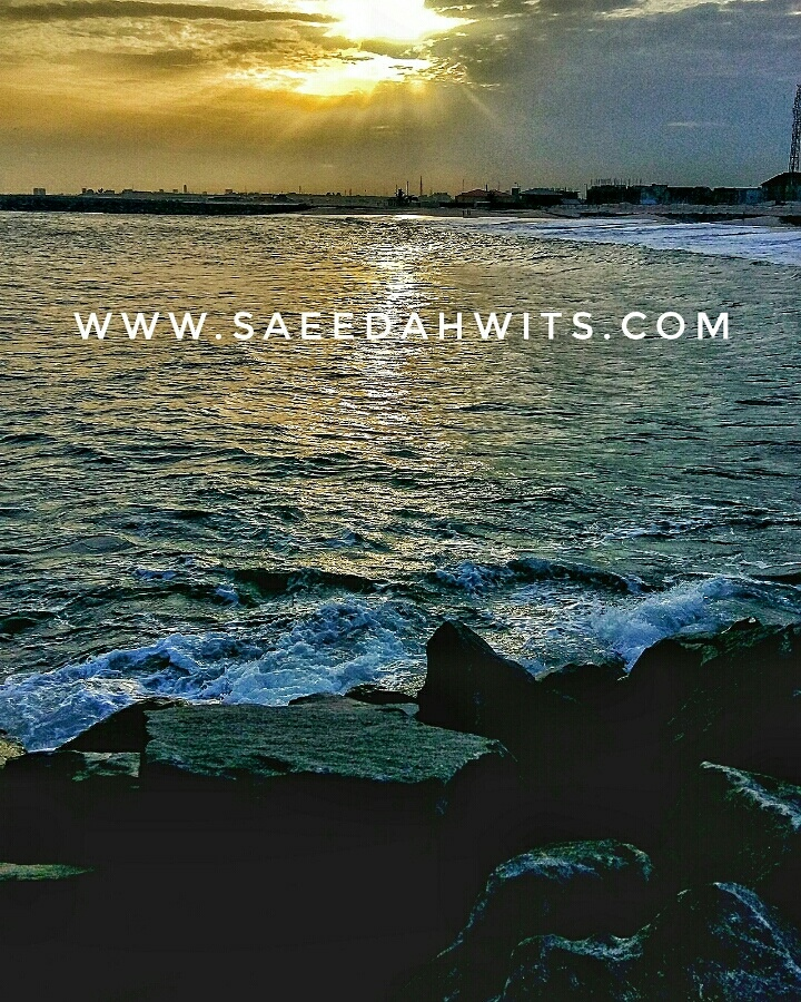 www.saeedahwits.com