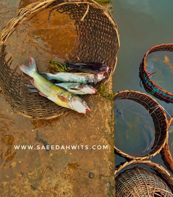 Epe Fish Market