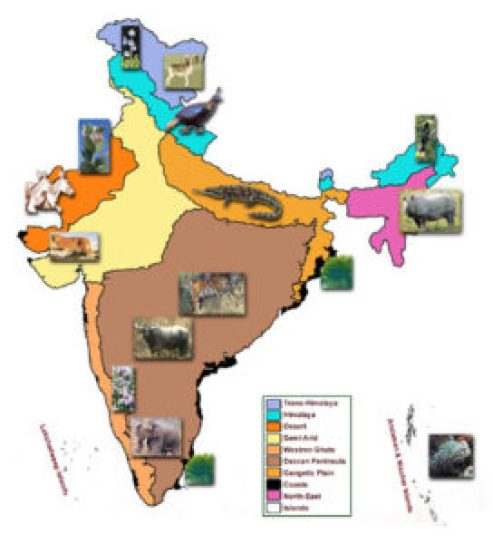 Eco-zones of india