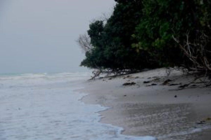 The Andaman's Beckon By Pamela Cheema