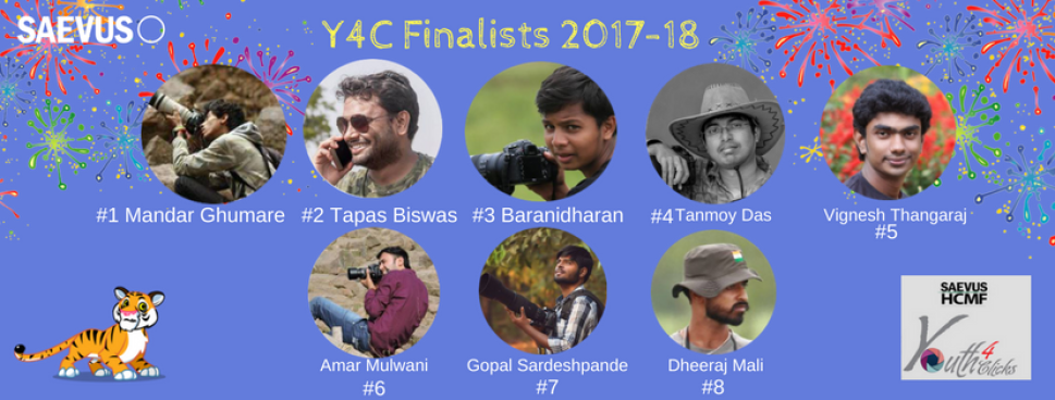 Finalist of the 5th Edition of SAEVUS - HCMF Youth4Clicks Contest
