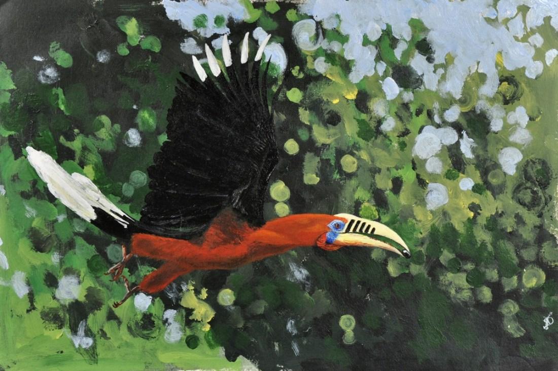 The Rufousnecked Hornbill