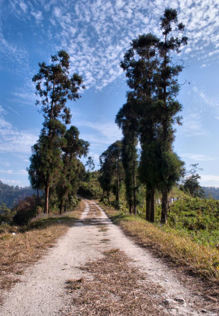 The trek to the sanctuary_Latpanchar