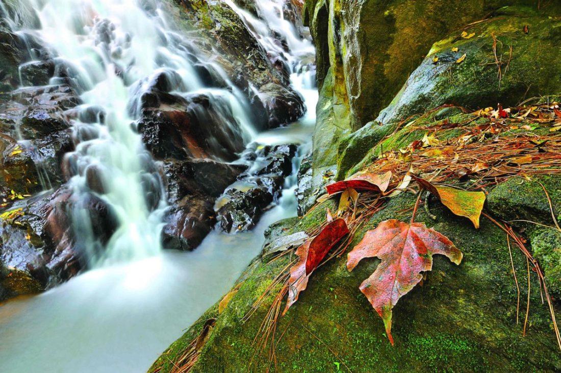 Tyrshi Falls, Meghalaya