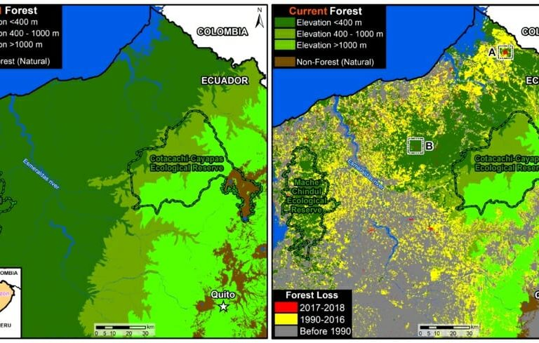 New report reveals northern Ecuadorian region has lost 61 percent of forests