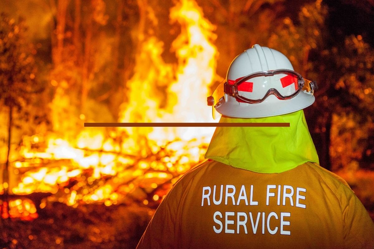 Bushfire : Alert and Avert
