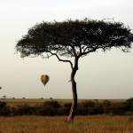 Greater wind speeds on landing on a balloon can affect the safety of a woman who is more than six moths pregnant
