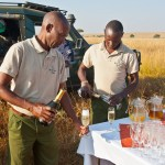 Even though safari vehicles are open your safety is guaranteed at all times