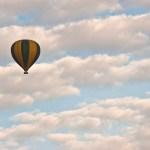 A safari balloon has a 'cockpit' for the pilot