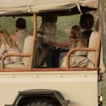 http://www.africaexclusivesafaris.com/kenya/saruni-samburu