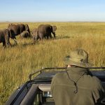 http://www.nathab.com/africa/best-of-kenya-tour/accommodations/maasai-mara-private-conservancy-kenya/