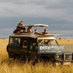 http://www.gettyimages.com/photos/masai-mara-national-reserve?excludenudity=true&sort=mostpopular&mediatype=photography&phrase=masai%20mara%20national%20reserve