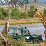 http://southernafricatravel.com/tours/luxury_african_safari/kenya-safari-wildlife-warriors/