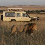 http://www.covingtontravel.com/2013/09/from-sunrise-to-sundowners-a-day-on-safari-in-kenya/
