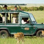 http://www.safarisonline.co.uk/package/mara-migration-safaris/