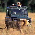 http://www.kenyabudgetcamping.com/3_days_masai_mara_budget_camping_daily_deparure_joining_safari.htm