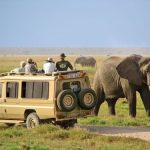 http://www.africajoytours.com/kenya-safari-packages/