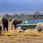 http://www.zicasso.com/luxury-vacation-kenya-tanzania-tours/total-sensory-adventure-kenya-and-tanzania