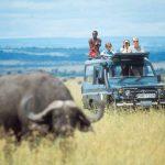 http://www.asiliaafrica.com/east-africa-safari/kenya/greater-masai-mara/rekero-camp/