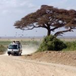 https://www.yampu.com/tours/kenyas-capital-serengeti/