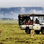 http://www.sunsafaris.com/tours-and-packages/kenya-tours-and-packages/kenya-classic-honeymoon.html