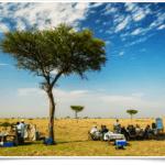 http://safariholidaykenya.com/tours/masai-mara-safari-deluxe