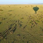 http://www.independenttraveler.com/slideshow/the-worlds-9-best-hot-air-balloon-rides