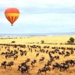 http://www.govisitkenya.com/cheap-kenya-safari.html
