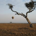 http://www.potentash.com/2014/12/30/hot-air-ballooning-kenya-adventure-sky/