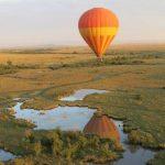 https://www.onthegotours.com/blog/2014/09/photo-showcase-safari-safari/