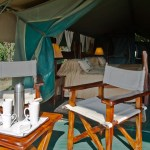 Tents are decadent safari suites and luxury accommodation