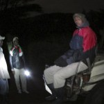 Night game drives are not allowed in the reserve