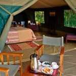 Traditional tented camp delivers exclusive safaris for adventurous families and couples