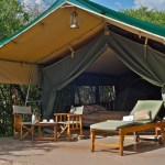 Tents facilitate uninterrupted views