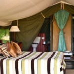 Traditional tented camps deliver exclusive safaris for adventurous couples and families