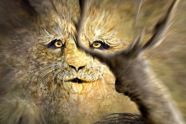 Constant dreams about lion could mean that your spirit animal is a lion