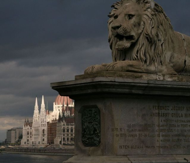 Diverse Earthly Manifestations Of Lion Symbolism Kenya Wildlife