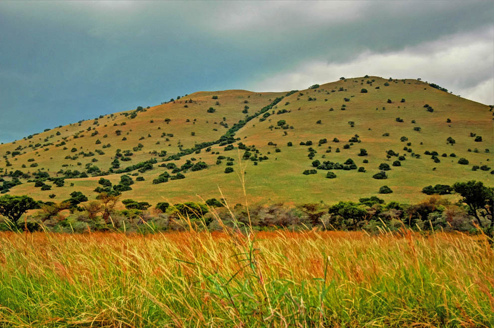 Ruma National Park_hillside