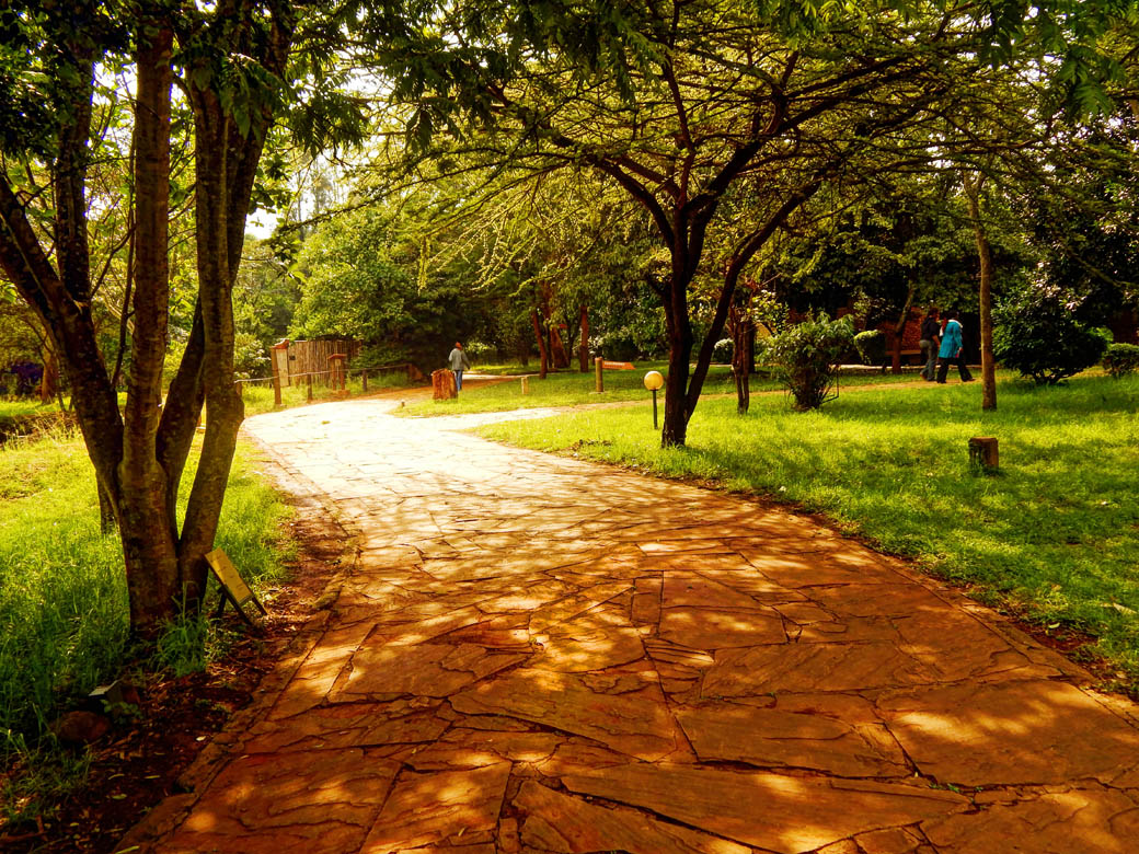 Nairobi Safari Walk_footpath