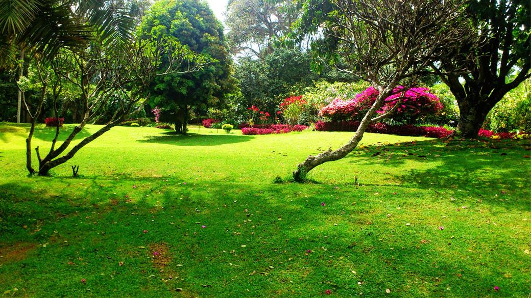 Kapsimotwa gardens_grounds7