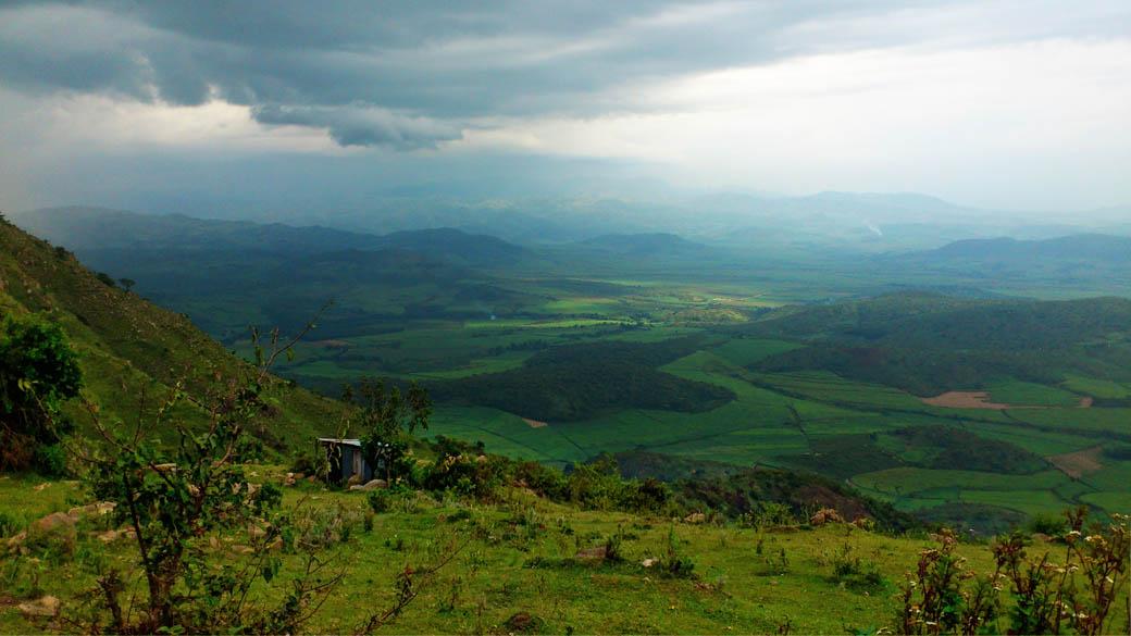 Kapsimotwa gardens_nandi hills2