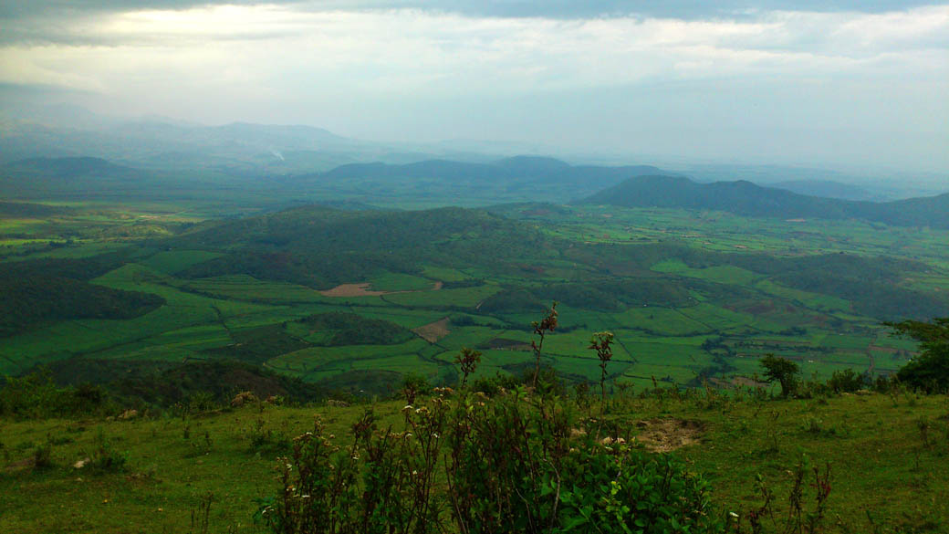 Kapsimotwa gardens_nandi hills3
