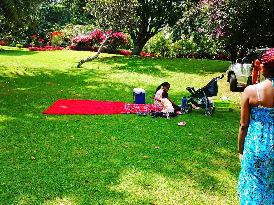 Kapsimotwa gardens_picnic site