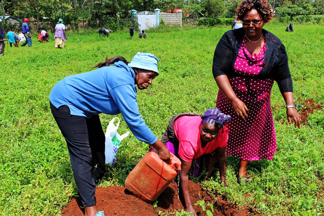 Save Mount Kenya _local community planting