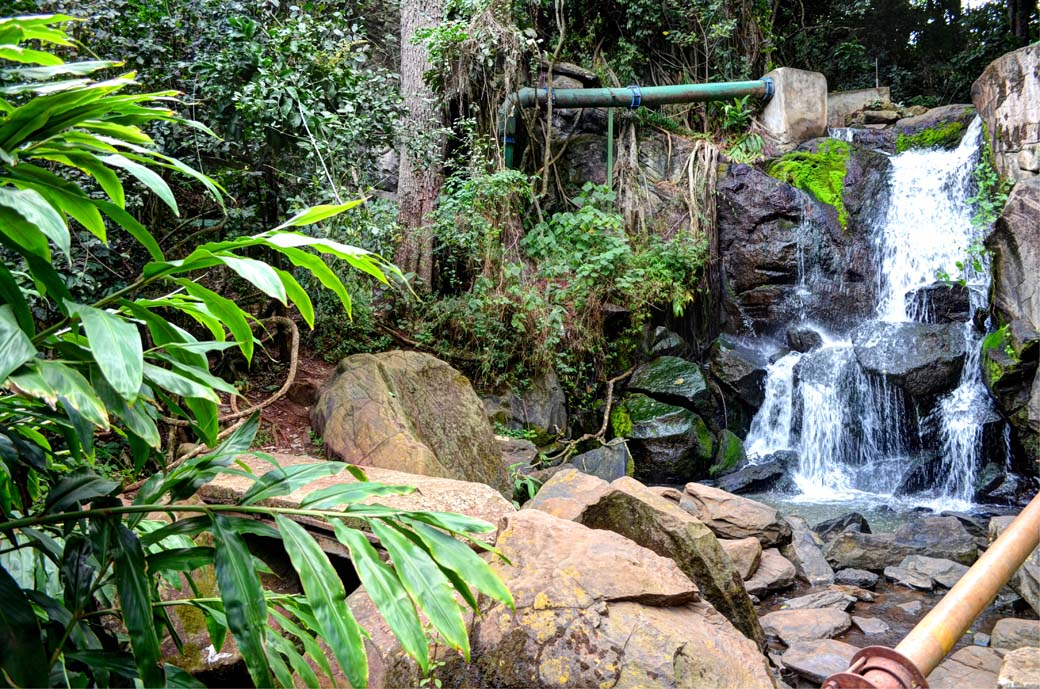 Oloolua Nature Trail_Waterfall4
